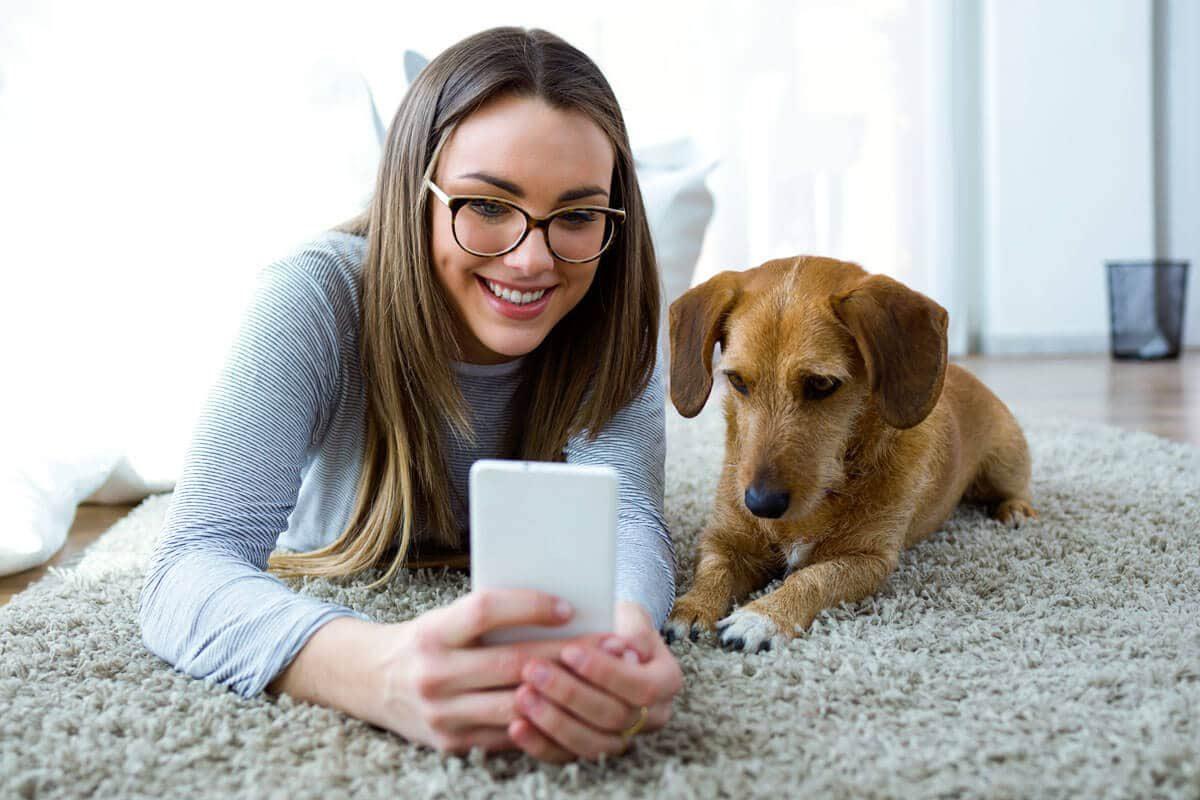 Petchef Felismerik E A Kutyak Az Arckifejezeseket 2
