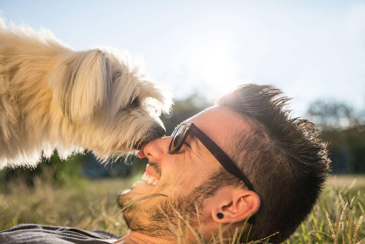Petchef A Kutyasok Bizonyitottan Egeszsegesebbek A Kutyatlanoknal (1)