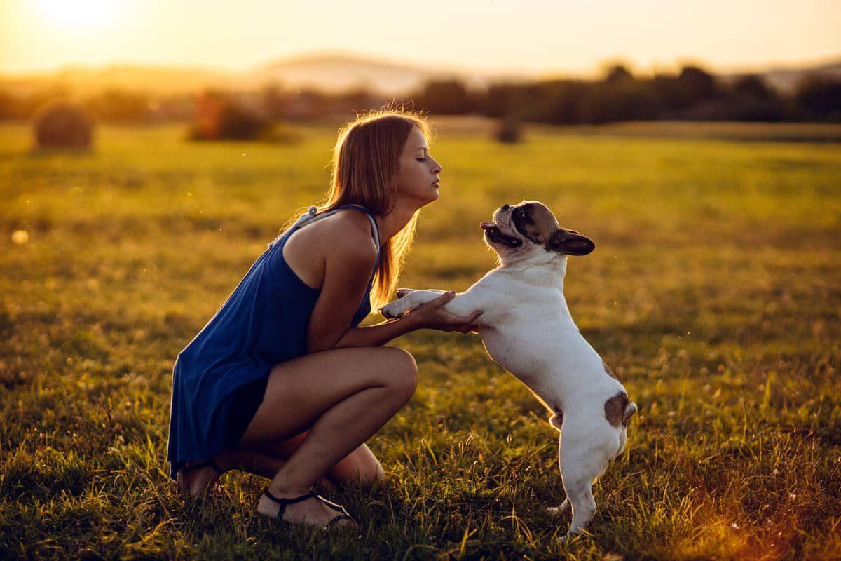 Petchef A Kutyasok Bizonyitottan Egeszsegesebbek A Kutyatlanoknal 3