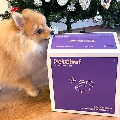 Petchef Client Pic 1 2
