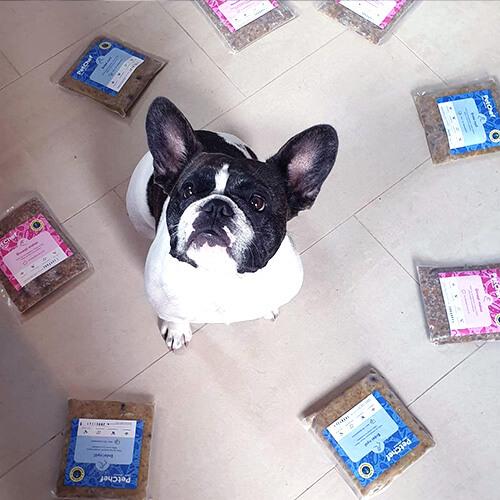 Petchef Client Pic 2
